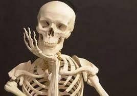 skelet denkend